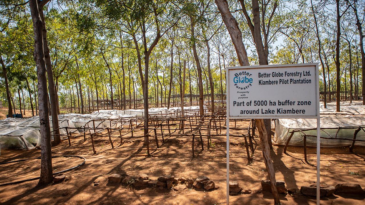 Bilder aus Kiambere 2018