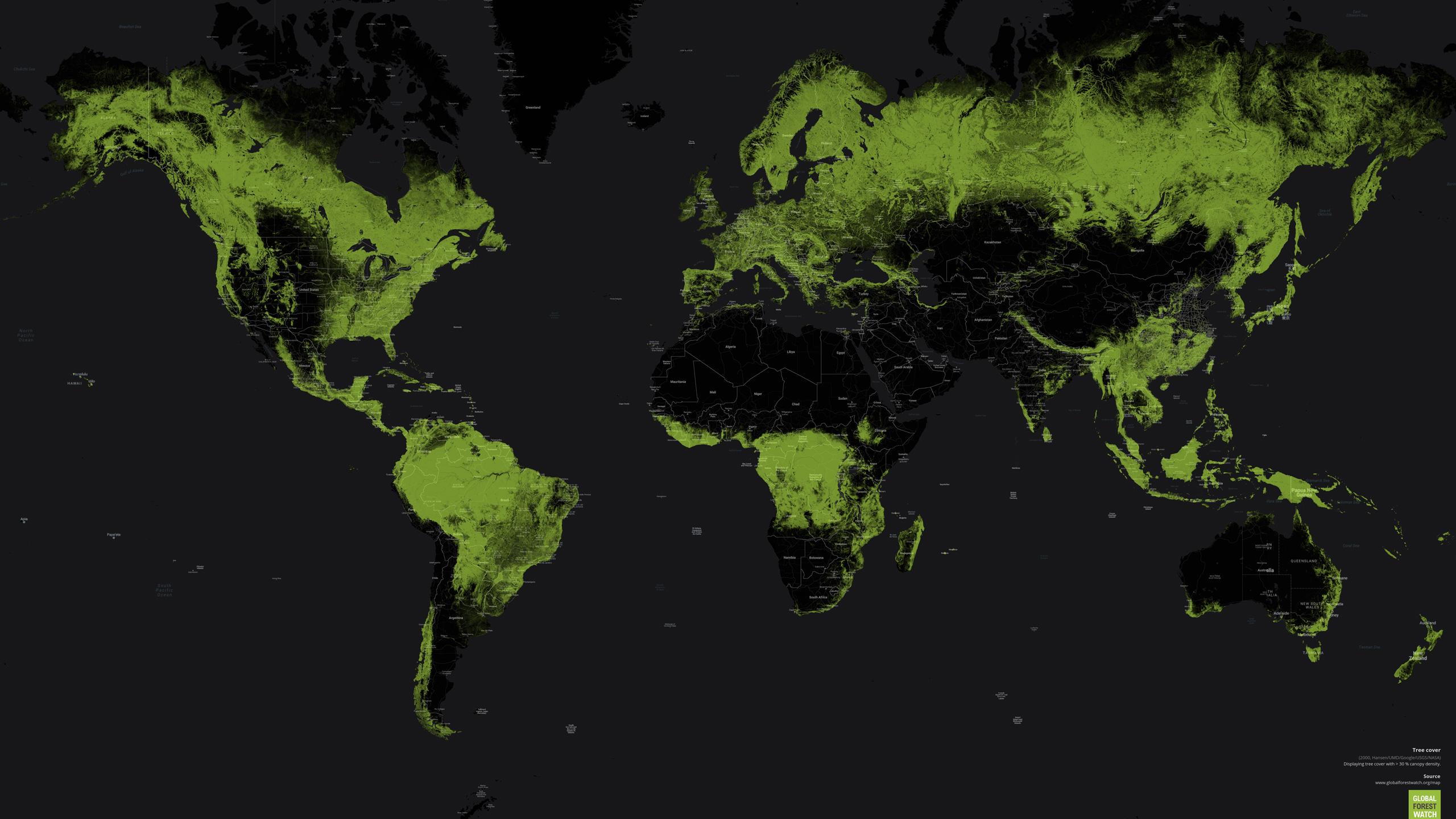 Einfluss auf die Wälder der Welt