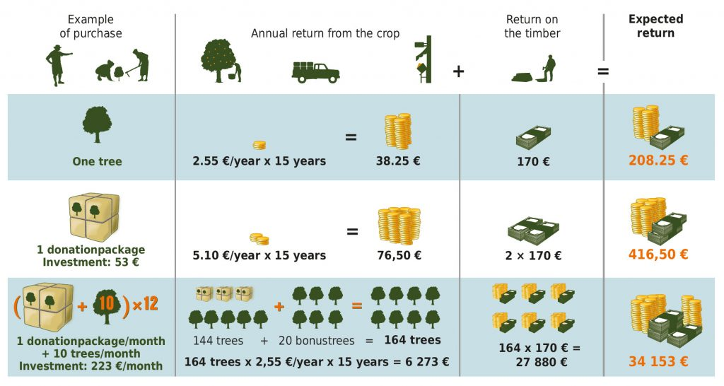 Your expected return from the trees over 20 years in the form of repurchases